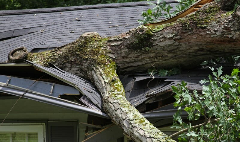 Roofing Insurance Claim Specialists